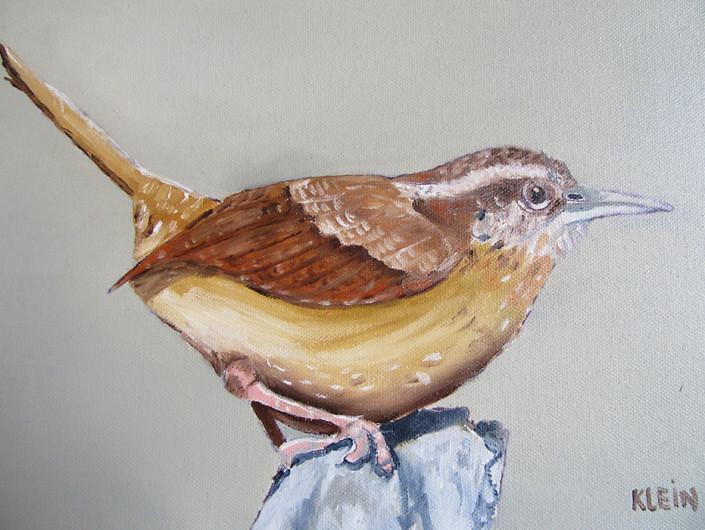 Carolina Wren / oil on canvas 9 x 12 framed / $175.00