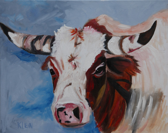 Cow / 16 x 20 oil / $225.00